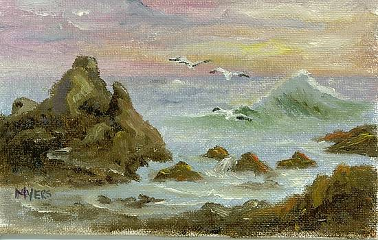 Sea Coast by Rhonda Myers
