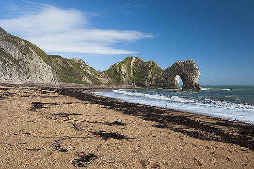 Sea Dragon Durdle Door by Donald Davis