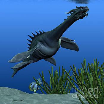 Corey Ford - Sea Dragon on Reef