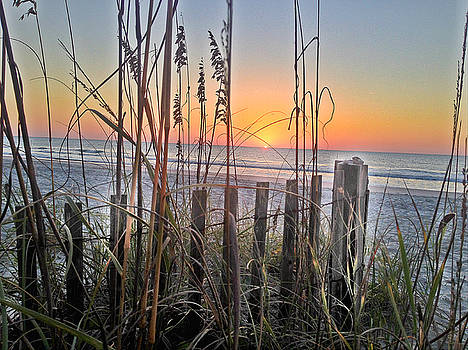 Sea Fence at Sunrise by Joey OConnor