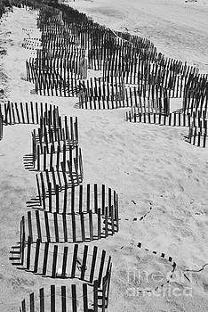 Jost Houk - Sea Fence