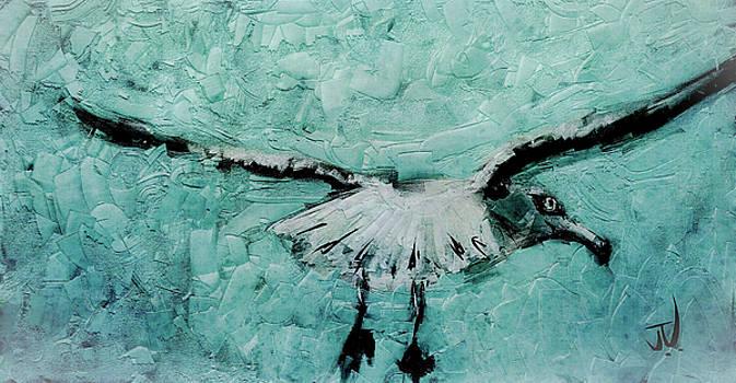 Sea Gull by Jim Vance