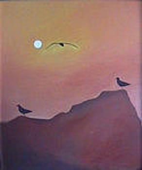 Sea Gulls by Eddy Collins