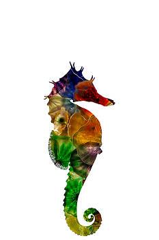 Sea Horse by Michael Colgate