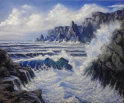 Sea Inlet by John Cocoris
