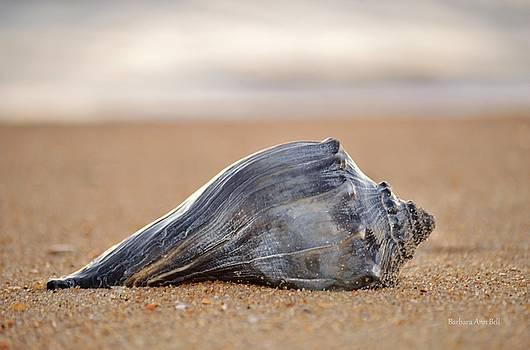 Sea Life by Barbara Ann Bell