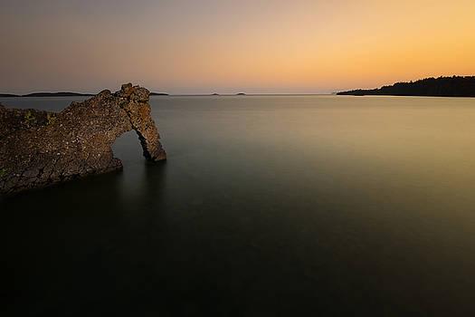 Sea Lion basink on Summer Nigh Sunset's glow by Jakub Sisak