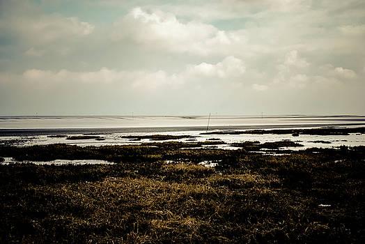 Sea by Mei Li Ronfeld