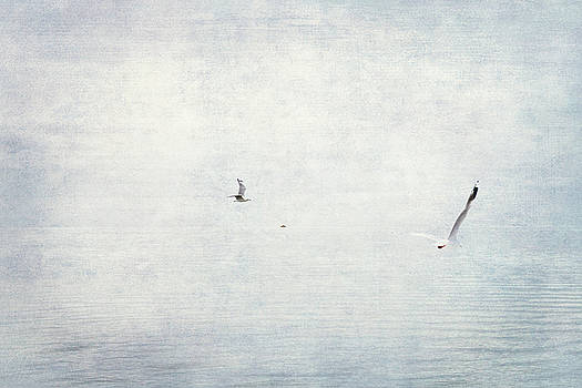 Sea Mist by Margaret Hormann Bfa
