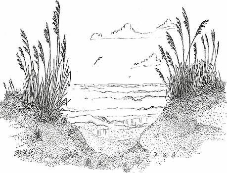 Sea Oats by Barney Hedrick