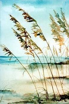 Sea Oats by Helen Hickey