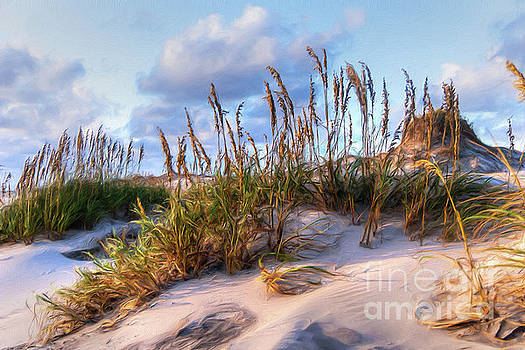 Dan Carmichael - Sea Oats on Outer Banks Sand Dunes AP