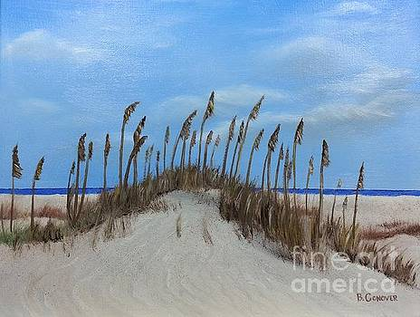 Sea Oats on Sand Dunes by Bev Conover