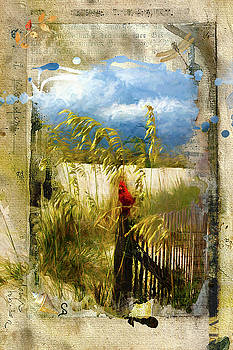 Sea Oats with Cardinal by Don Schiffner