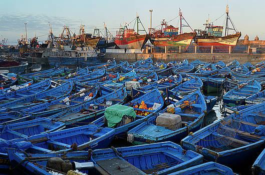 Reimar Gaertner - Sea of blue boats at sunrise in the marine port of Essaouira Mor