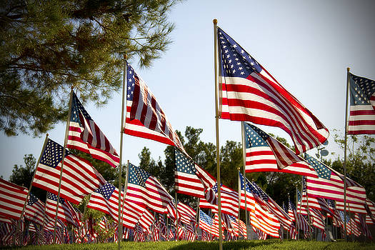 Sea of Flags by Mike Hill