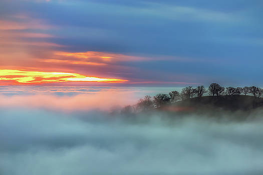 Marc Crumpler - Sea of Fog