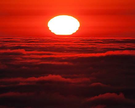 Sea of Fog by Matt Tilghman