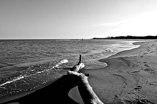 Sea on bw by Renato Armignacco