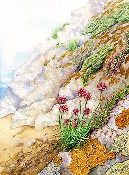 Sea Pink by Lynne Henderson