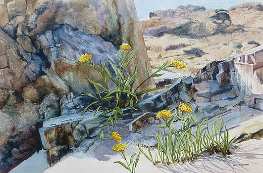 Sea Rock Posies by Karol Wyckoff