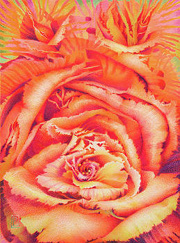 Sea Rose by Lynn Bywaters
