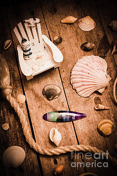 Sea shell decking by Jorgo Photography - Wall Art Gallery