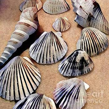 Sea Shells by Diana Chason