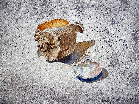 Irina Sztukowski - Sea Shells