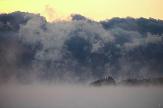 Sea Smoke at Owls Head Detail by John Meader