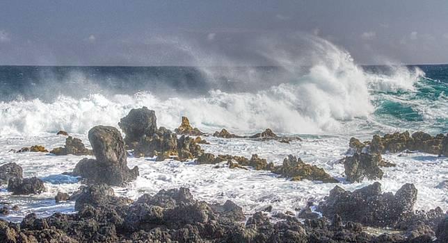 Sea Spray by Nadine Berg