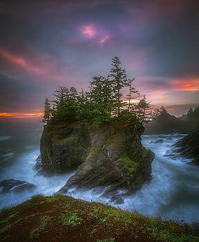 Sea stack with trees of Oregon coast by William Lee