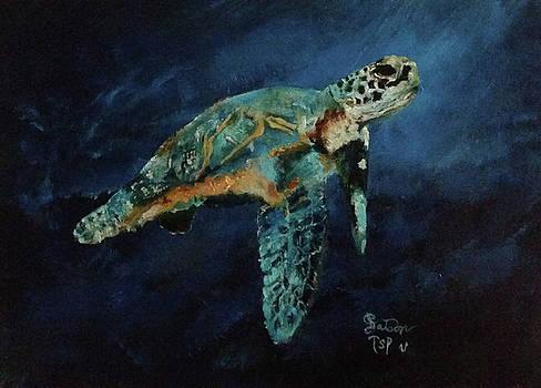 Sea Turtle by Barbie Batson