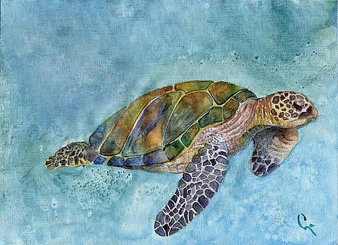 Sea Turtle II by Dawnstarstudios