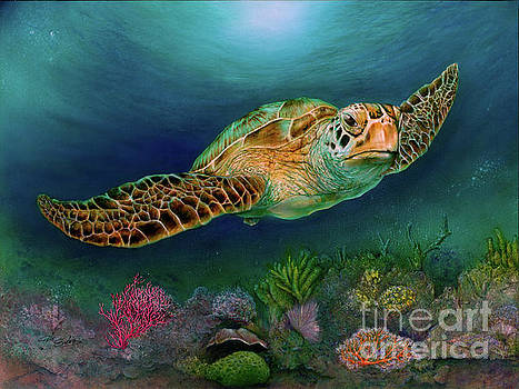 Sea Turtle II by Pete Sintes