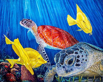 Manuel Lopez - Sea Turtle