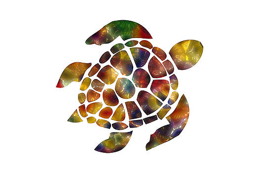 Sea Turtle by Michael Colgate