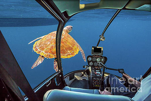 Sea Turtle submarine by Benny Marty