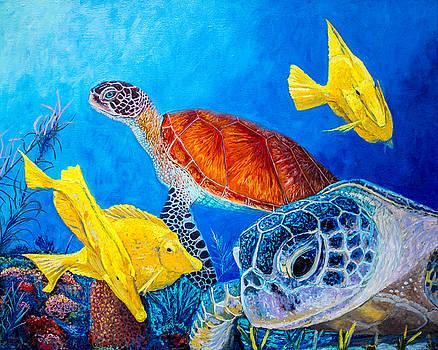 Manuel Lopez - Sea Turtles