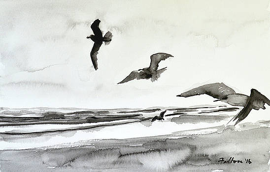 Seabirds in black and white by Julianne Felton