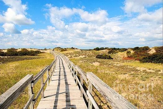 Seabound Boardwalk by Debbie Stahre