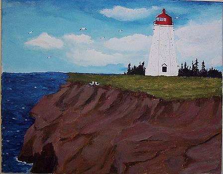 Seacow Head Lighthouse by Tony  DeMerchant