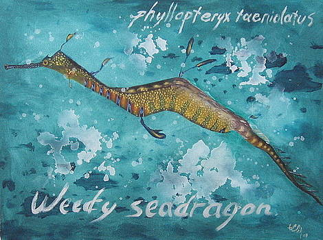 Seadragon by Senol Sak
