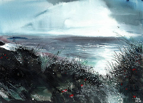 Seaface by Anil Nene