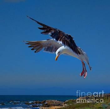 Seafood Landing by Patrick Witz