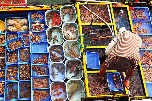 Seafood Market by Michael Cheung