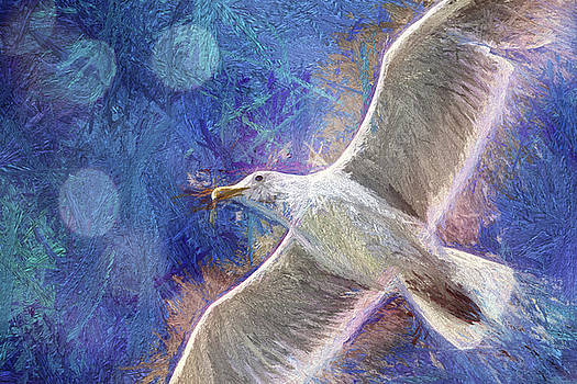 Peggy Collins - Seagull Against Blue Abstract