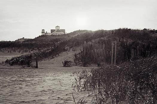 Seagull Beach by Brooke T Ryan