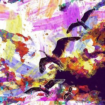 Seagull Bird Beautiful Nature  by PixBreak Art