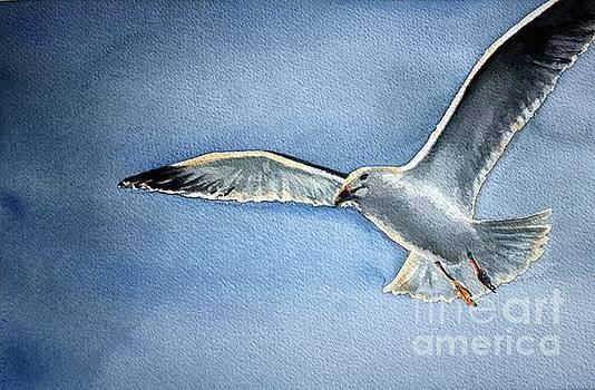 Seagull by Eleonora Perlic